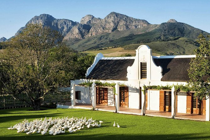 Cape Town Private Tour, Robben Island and Table Mountain Car