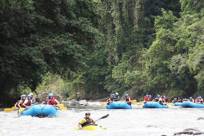 White Water Rafting Pacuare River One Day from San Jose/Arenal/Southern Caribbe photo 6