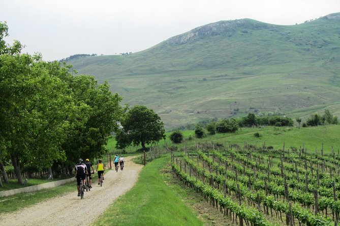 The wine route by bike - two day trip photo 9