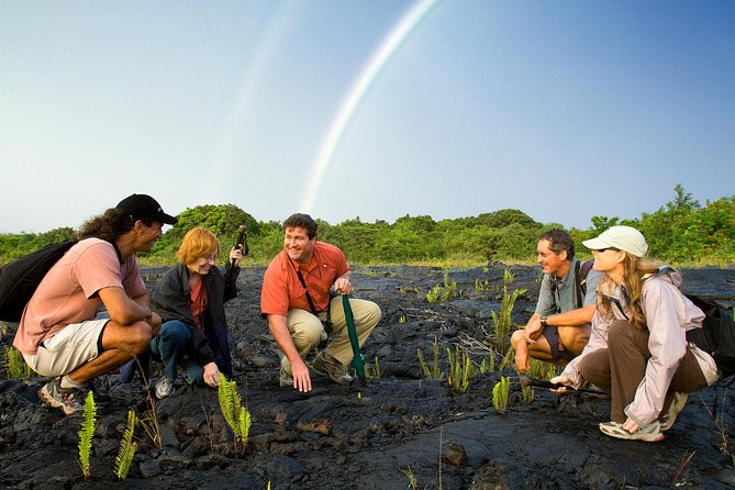 Discover Volcano Country