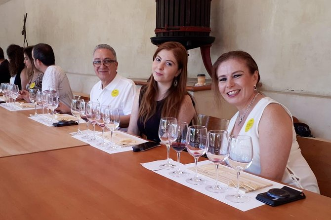 Premium Concha y Toro Winery Tour with Wine and Cheese Tastings from Santiago photo 12