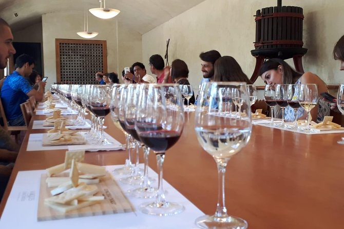 Premium Concha y Toro Winery Tour with Wine and Cheese Tastings from Santiago photo 9