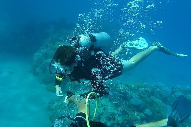 Baru Island Scuba Diving Experience
