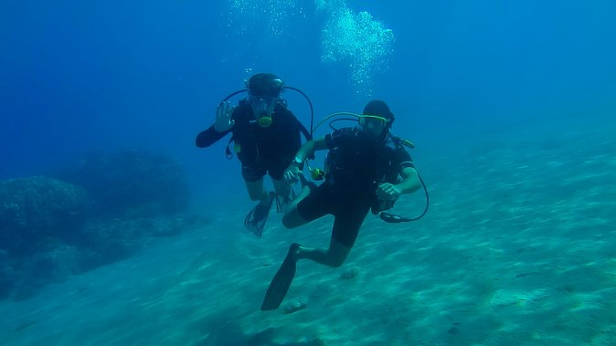 Half Day Scuba Diving Experience
