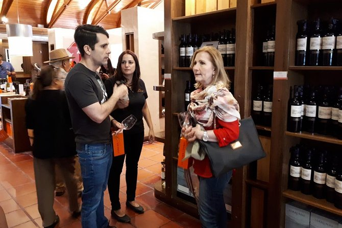 Premium Concha y Toro Winery Tour with Wine and Cheese Tastings from Santiago photo 3