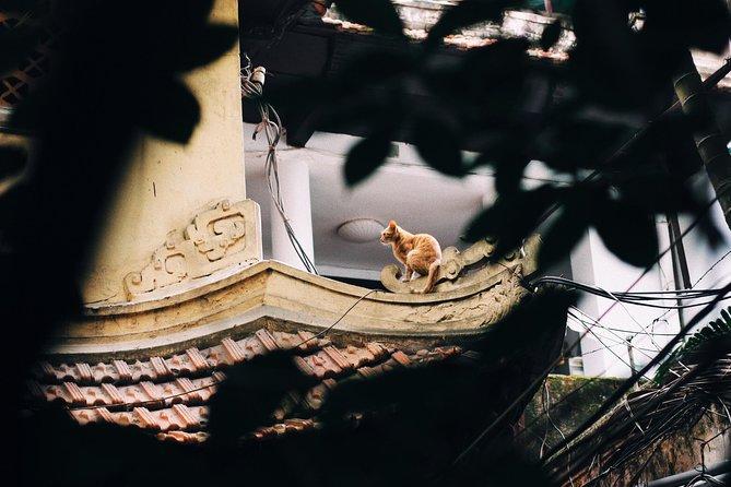 BonBon Experience: Film Photography Tour - Hanoi Old Quarter