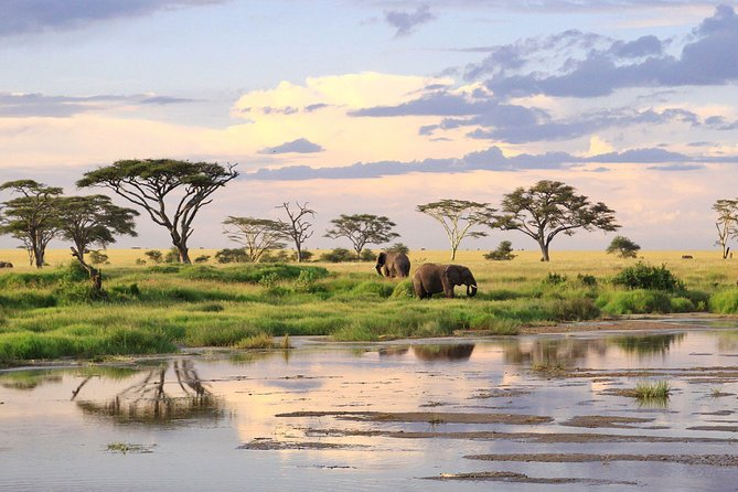 5 Days Tarangire Serengeti Ngorongoro Crater