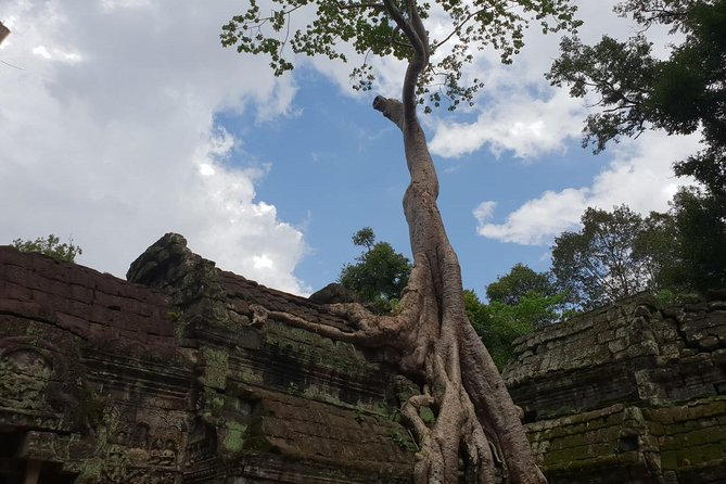 A Private Tour to The World Heritage Site in Siem Reap