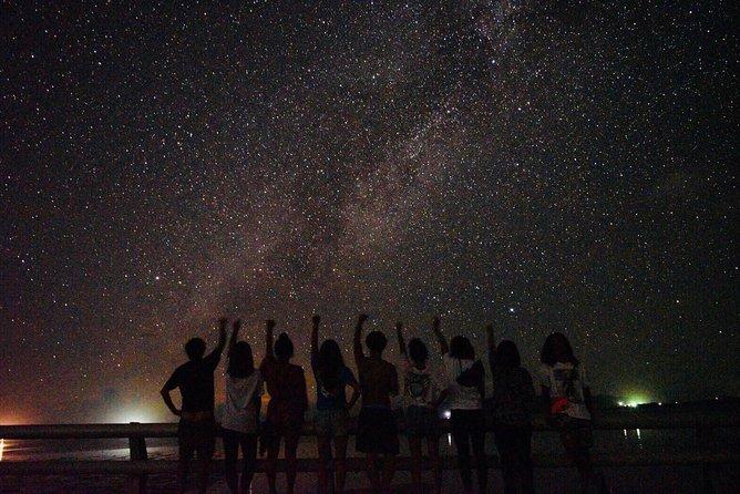 [Okinawa Ishigaki] Night Adventure Tour