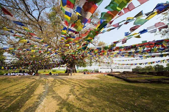 Buddha Step through Bodhi tours and treks