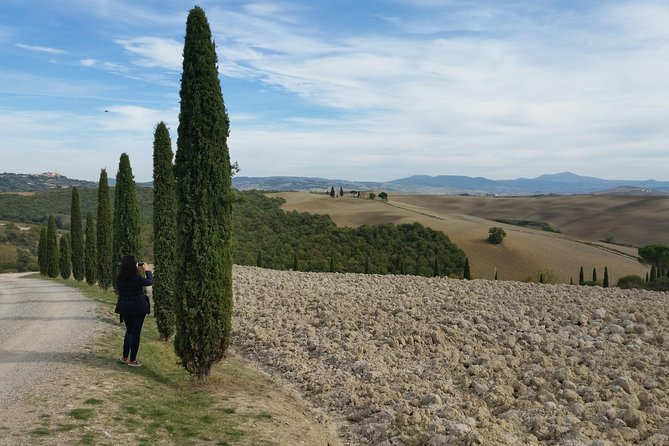 Truffle Hunting Experience in Tuscany and Wine Tour in Chianti Region - Ultimate