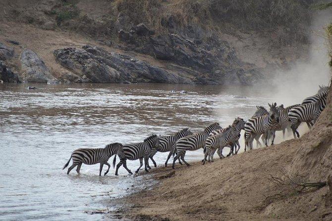 2 Nights 3 Days Fly Safari to Serengeti National Park from Zanzibar