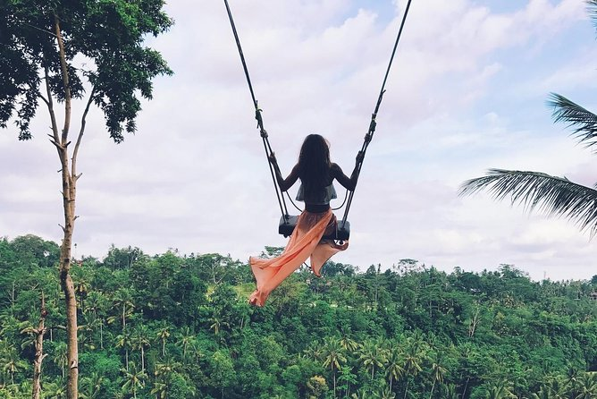 Private Bali swing, waterfall instagramable tour