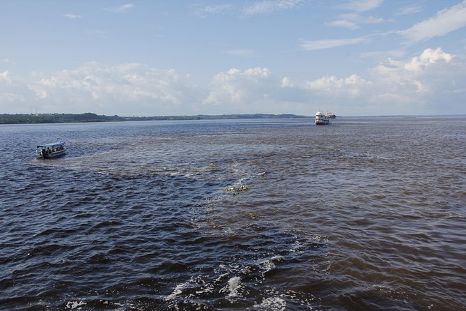 Rio Negro Cruise from Manaus to the Amazon River photo 6