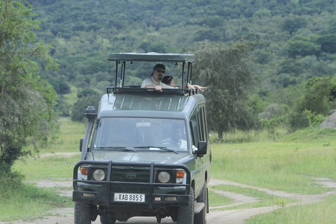 Akagera wildlife Safari, Private Day-trip