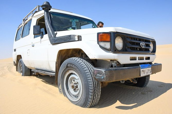 Private Full Day Trip to the Valley of the Whales & Fayoum Oasis photo 3