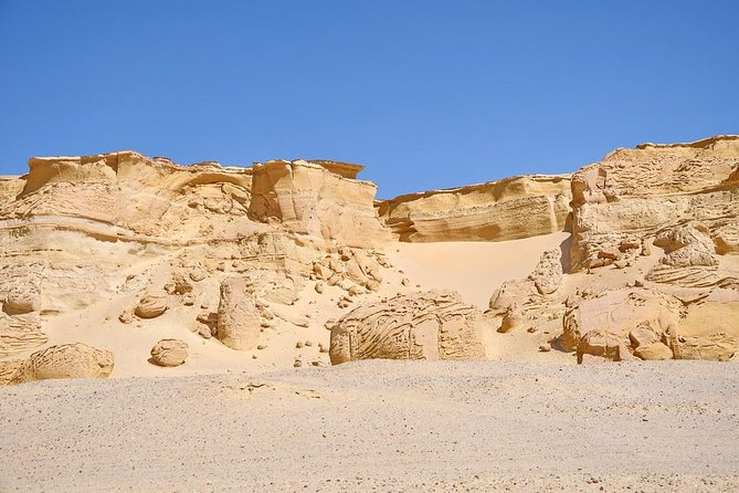 Private Full Day Trip to the Valley of the Whales & Fayoum Oasis photo 31