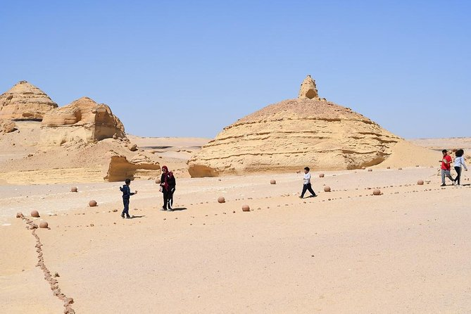 Private Full Day Trip to the Valley of the Whales & Fayoum Oasis photo 9