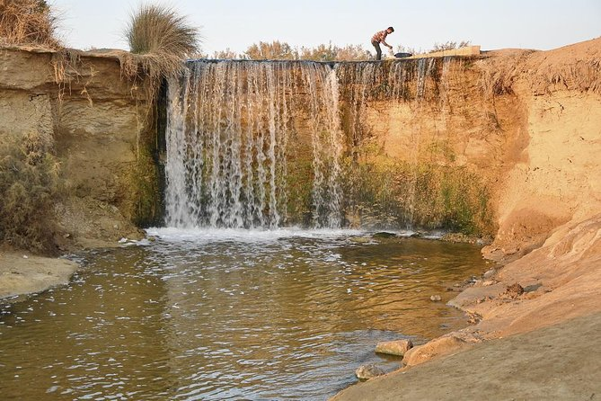 Private Full Day Trip to the Valley of the Whales & Fayoum Oasis photo 24