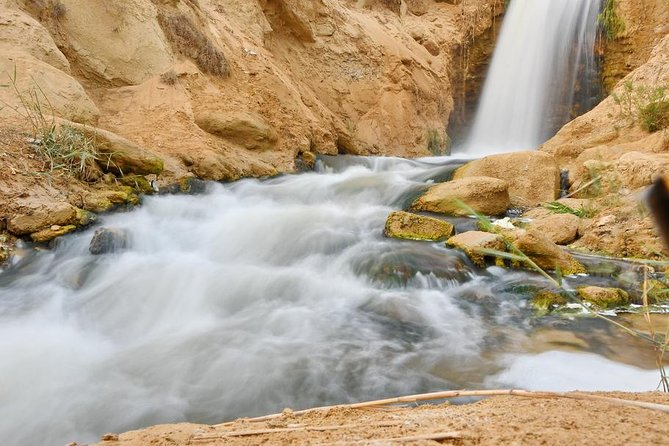 Private Full Day Trip to the Valley of the Whales & Fayoum Oasis photo 19