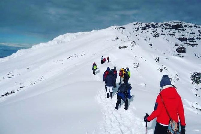 Mountain Kilimanjaro Trekk via Machame Route(7 days)