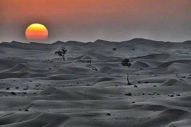 4 Days Private Transport From Marrakech To Fes Via Merzouga Dunes , Driver Guide