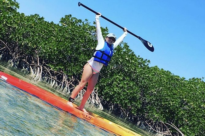 Mangroves Stand-Up Paddleboard Tour