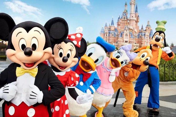 Shanghai Downtown Hotel to Disneyland Resort Round Trip Transfer