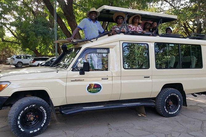 Kenya safari package