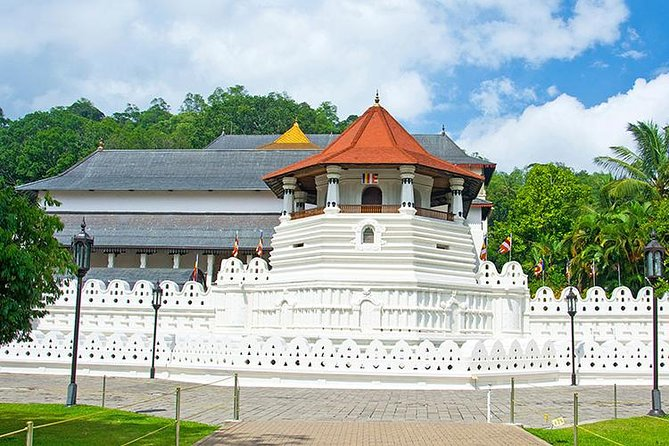 Kandy in a Day - Private Tour from Negombo photo 7