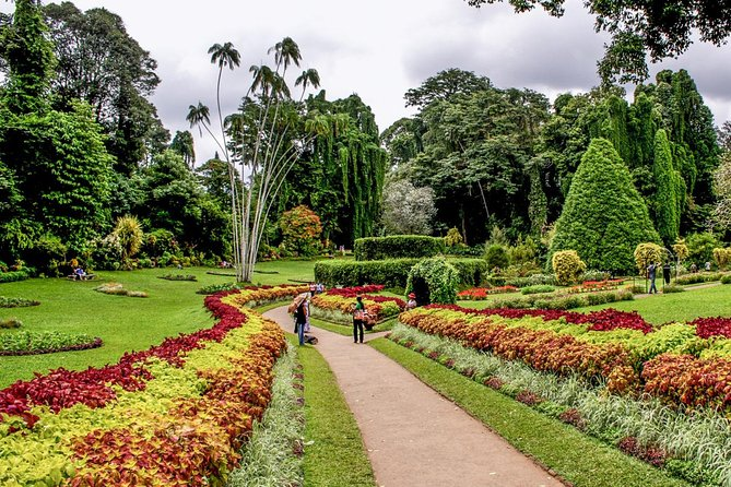 Kandy in a Day - Private Tour from Negombo photo 2