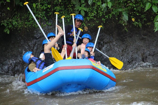 Bali private tour driver and guide - All about tour and activity in Bali