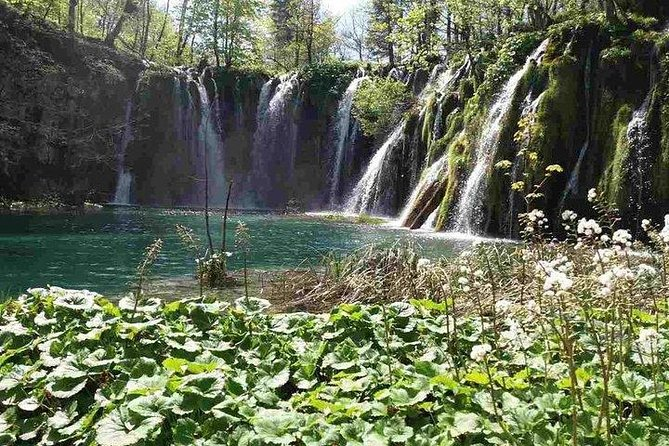 Plitvice Lakes National Park Day Tour from Zadar - simple, comfortable and safe