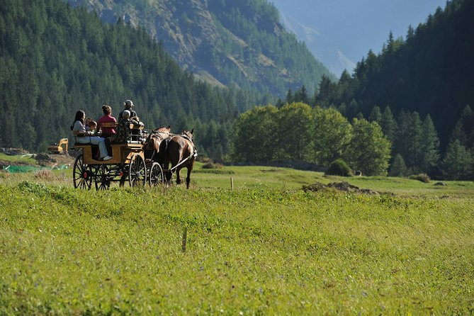 Riding in a sleigh or horse-drawn carriage in the Gran Paradiso Park