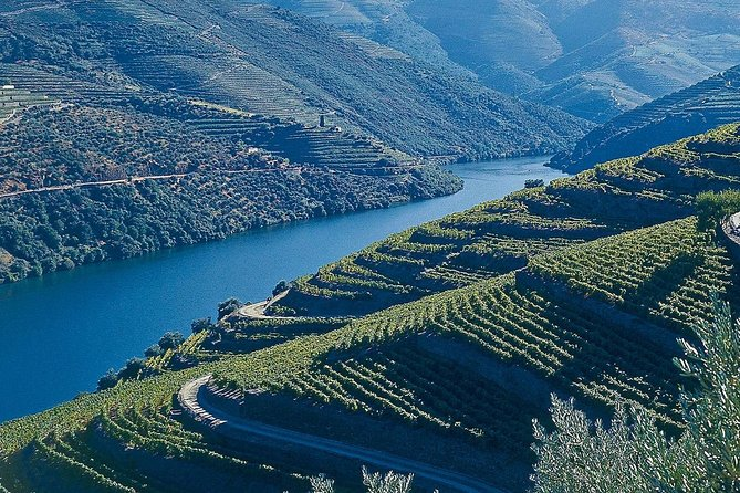 Douro - Private Tour