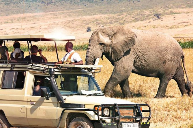 Private 3 Days Samburu National Park Safari All Inclusive