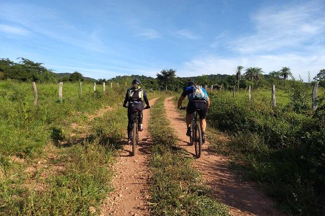 Roteiros de Bike (Cachoeiras - Arvorismo - Balneário)