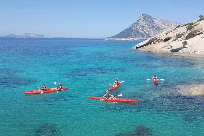 Morning kayak tour with snorkeling and fruit