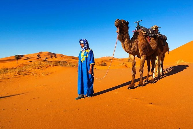 12 Days 11 Nights The best of Morocco (starts and end in Marrakesh)