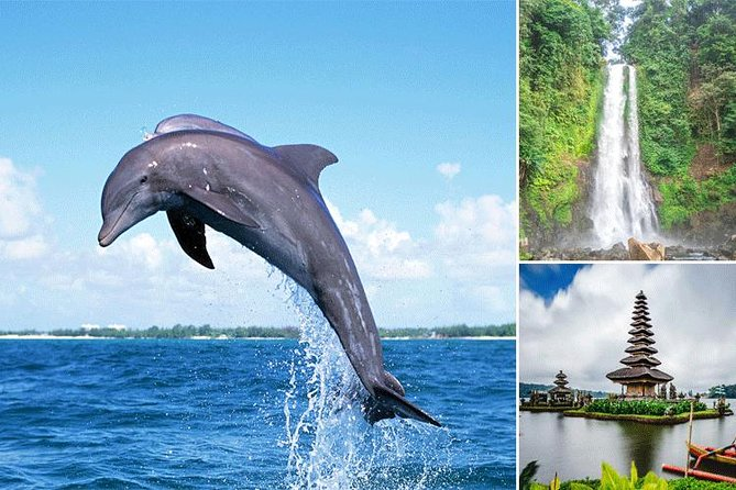 Bali Dolphin Tour at Lovina, Gitgit Waterfall and Ulundanu Beratan