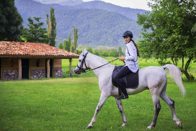 Horse Riding Tour From Telavi (Easy)