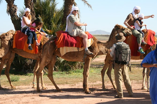Package 2,3,4 Tours Daily Departures From Marrakech