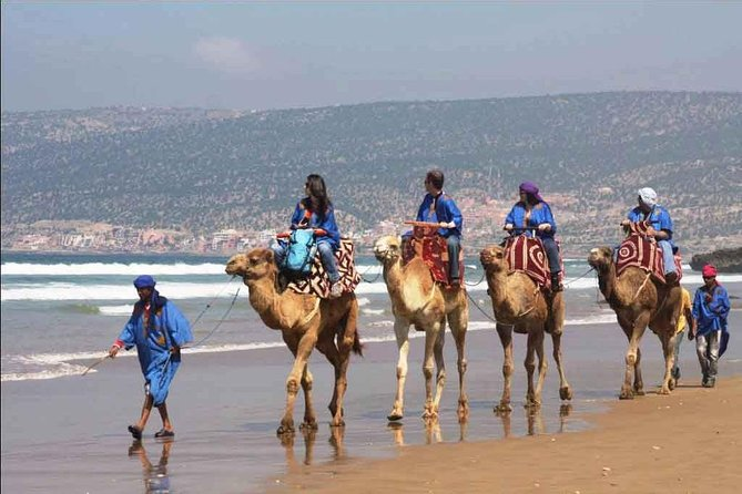 Agadir Camel Tour Ride 02 Hours photo 1
