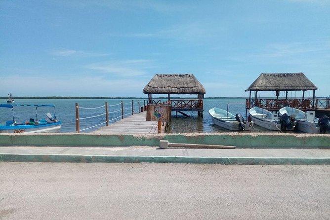 Rio Lagartos and Las Coloradas Day Trip from Merida