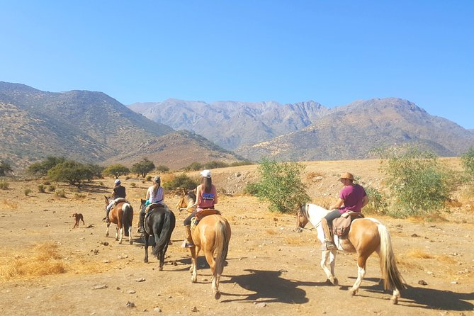 Horse Riding Tour in the Andes Santiago Chile