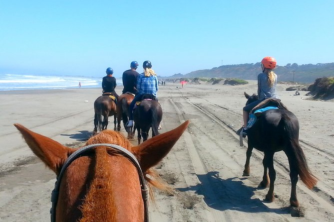 Viña del Mar and Valparaiso Private Tour Including Horseriding photo 7