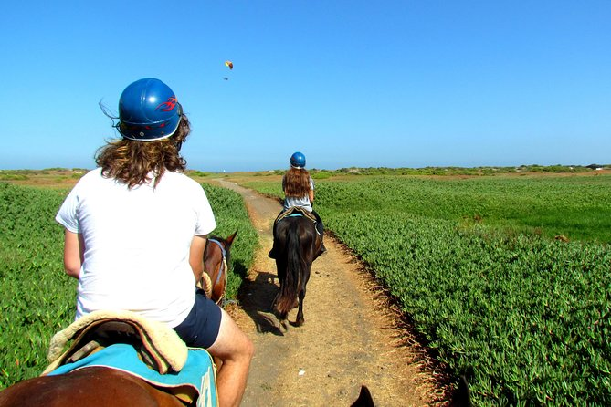 Viña del Mar and Valparaiso Private Tour Including Horseriding photo 12