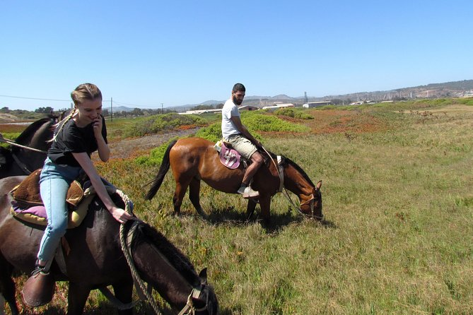 Viña del Mar and Valparaiso Private Tour Including Horseriding photo 11