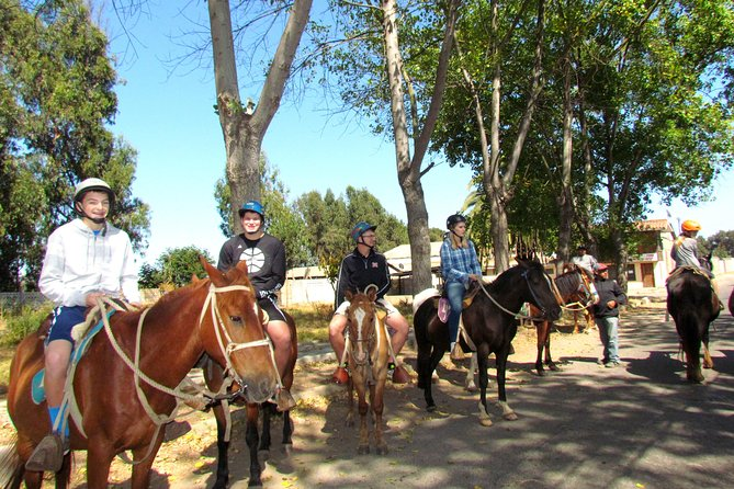 Viña del Mar and Valparaiso Private Tour Including Horseriding photo 2