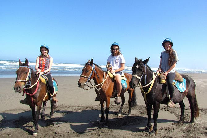 Viña del Mar and Valparaiso Private Tour Including Horseriding photo 1